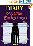 Minecraft: Diary Of A Little Enderman...