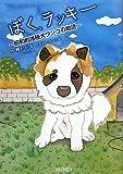 ぼく、ラッキー—昭和的雑種犬ワンコの物語