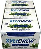 Xylichew Xylichew Peppermint 24 Pack