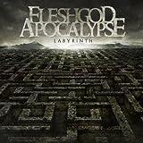 Labyrinth by Fleshgod Apocalypse (2013-08-20)
