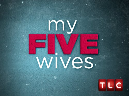 My Five Wives Season 1