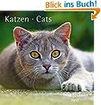 Katzen Cats 2017
