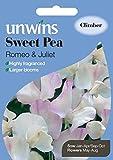 Unwins Pictorial Packet - Sweet Pea Aphrodite - 11 Seeds