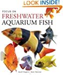 Focus on Freshwater Aquarium Fish