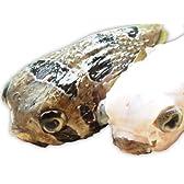 沖縄県産 アバサー(ハリセンボン) 1~1.5kg