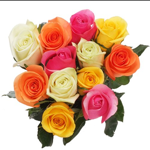 Roses Dozen Assorted