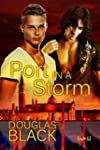 Port in a Storm (English Edition)