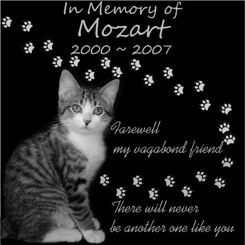Personalized Pet Dog Cat Memorial 12