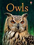 Owls (Usborne Beginners)