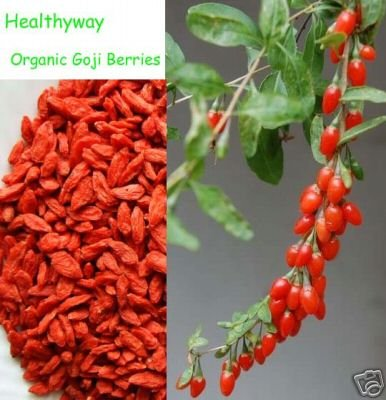 Super Grade Organic Goji Berries Wolfberry 10 lb