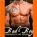 Bad Boy: Naughty at Night: Bad Boy: Naughty at Night, Book 1 Audiobook by Jamie Lake Narrated by James Talbot
