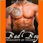 Bad Boy: Naughty at Night: Bad Boy: Naughty at Night, Book 1 | Jamie Lake