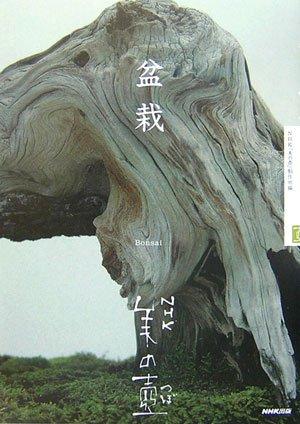 盆栽 (NHK美の壺)