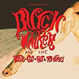 Rise & Fall of Butch Walker & The Let's-Go-Out-Tonites