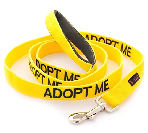 ADOPT ME Yellow Color Coded 2 4 6 Foot Padded Dog Leash (New Home Needed) Donate To Your Local Charity (4 Foot Leash)