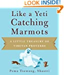 Like a Yeti Catching Marmots: A Littl...