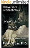 Deliverance Schizophrenia Water Spirits: Bible Study The Shattered Mind