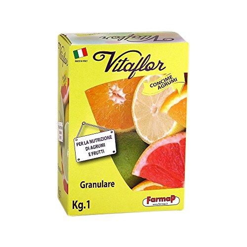 special-granular-plant-fertilizer-fertiliser-citrus-trees-for-tasty-fruits-1-kg