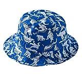 Toubaby Kid Boy's Dinosaur Sun Hats Little Boy's Sunmmer Hats Bucket Hat 0-7t (2-4years old)