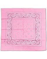 Pink Bandana Party Accessory (1 count)