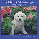 img - for Puddles : A Collection of Puppies book / textbook / text book