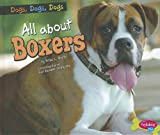 img - for All about Boxers (Pebble Plus) book / textbook / text book
