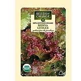 Seeds of Change Certified Organic Lettuce, Redina - 700 milligrams, 500 Seeds Pack