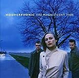 echange, troc Hooverphonic - Magnificent Tree