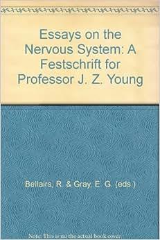 Autonomic Nervous System Diagram