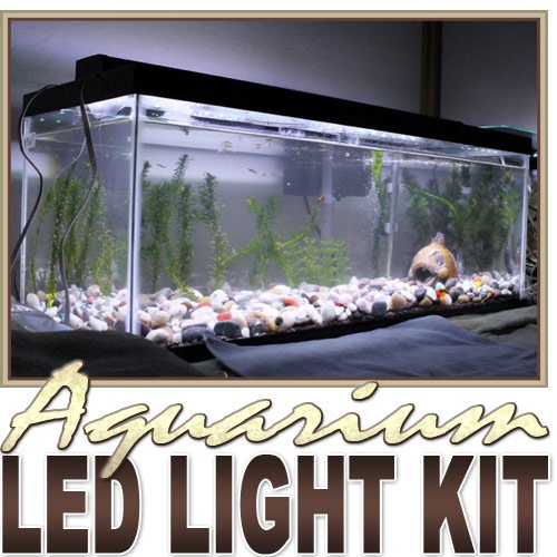 2' Ft Cool White Aquarium Tank Coral White Led Backlight Night Light On/Off Switch Control Kit - Main Lighting, Sub Lighting, Fresh Water Tanks, Salt Water Tanks Led Reading Light Strip Night Light Lamp Bulb Accent Lights Smd3528 Water Resistant 3528 Smd