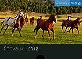 echange, troc Sivadjian EVE - Nouveaux 52 semaines chevaux 2012