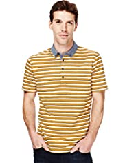 Autograph Pure Cotton Striped Polo Shirt