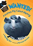 WANTED! A Guinea Pig Called Henry (Rainbow Street Shelter)