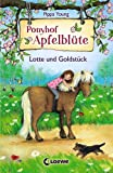 Ponyhof Apfelblüte - Lotte und Goldstück: Band 3
