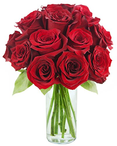 Red rose of passion bouquet one dozen long stemmed with vase flowersnho - Bouquet de rose artificielle ...