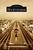 img - for Hawthorne book / textbook / text book