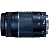 Canon EF 75-300mm f/4-5.6 III Telephoto Zoom Lens for Canon SLR Cameras (Bulk Packaging)