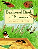 Backyard Birds of Summer: The Perfect Introduction to Birding