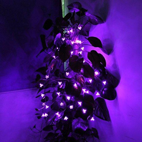 Tlt 5M 50 Led Solar Powered Purple Blossom Decor String Lights For Bedroom, Christmas, Holiday, Party, Garden Led004