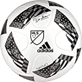 adidas Performance 2016 NFHS MLS Top Training Soccer Ball, White/Black/Iron Metallic, 5