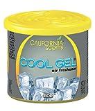 California Scents CG4-12205 Ice Air Freshener, Set of 12