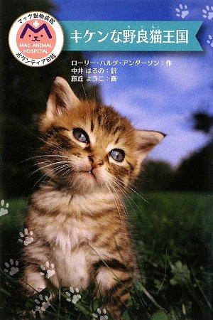 キケンな野良猫王国―マック動物病院ボランティア日誌