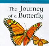 The Journey of a Butterfly (Lifecycles) (0749631457) by Scrace, Carolyn