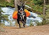 Ruffwear 50101-815S1 Hunderucksack, XS, campfire orange -
