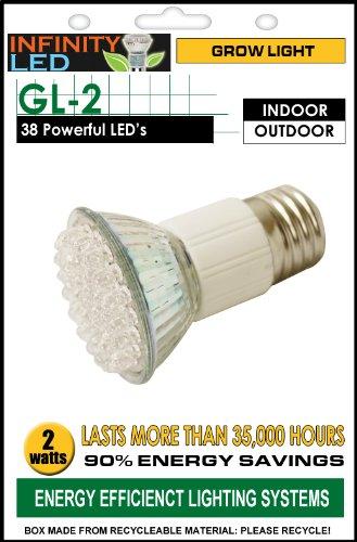 Infinity Grow Light Bulb, 2W