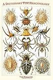 Tim Williams A Dictionary for Arachnology