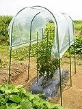DAIM 家庭菜園 雨よけセット トマトやナスのひび割れ防止、雨や風からしっかりガードします!