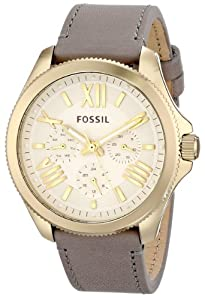 Fossil Women's AM4529 Cecile Analog Display Analog Quartz Grey Watch
