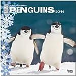 Penguins 2014 - Pinguine: Original Br...