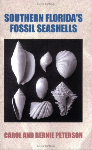 Southern Florida's Fossil Seashells
